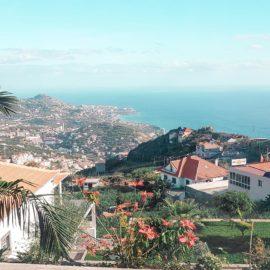 Madeira | Ein Tagestrip durch den Süden der Blumeninsel